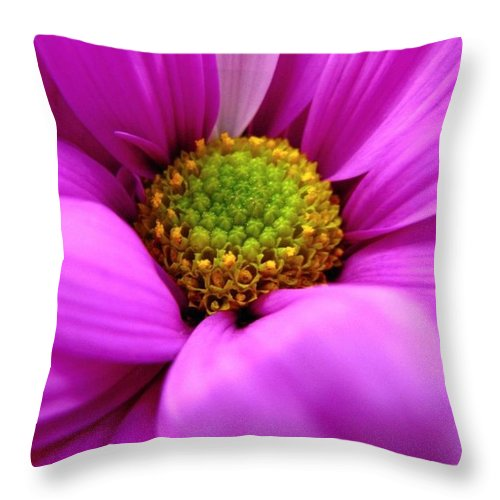 Flower Throw Pillow featuring the photograph Hidden Inside by Rhonda Barrett