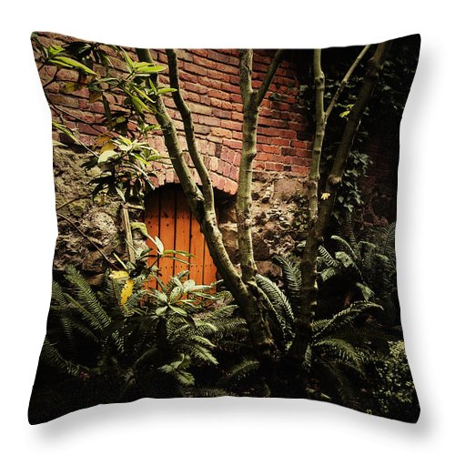 Brick Throw Pillow featuring the photograph Hidden Passage by Tim Nyberg