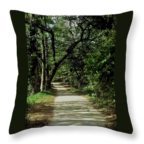 Path Throw Pillow featuring the photograph Hidden Path by Gary Wonning