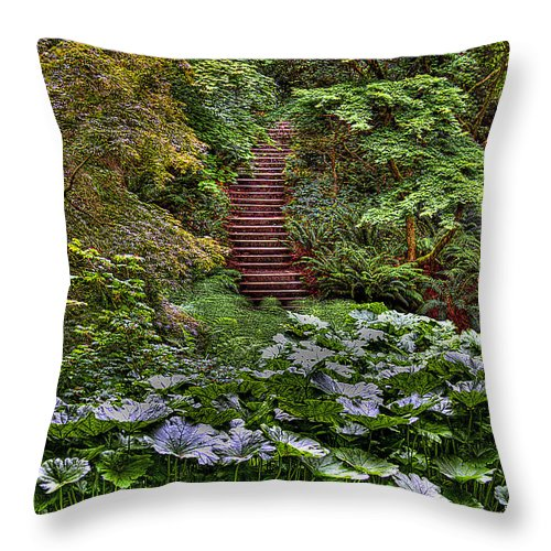 Stairs Throw Pillow featuring the photograph Hidden Stairs by David Patterson