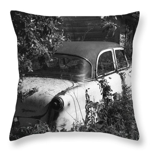 Abandoned Throw Pillow featuring the photograph Hidden Treasure by Richard Rizzo