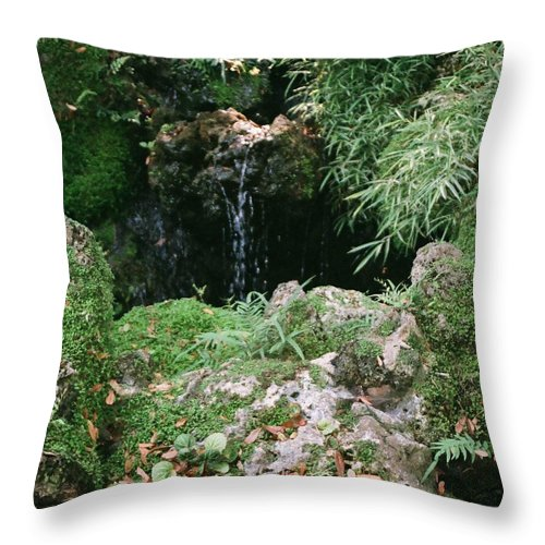 Nature Throw Pillow featuring the photograph Hidden Waterfall by Dean Triolo