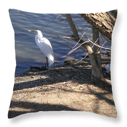Nature Throw Pillow featuring the photograph Hiding And Seeking by Lucyna A M Green