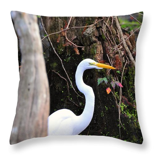 Egret Throw Pillow featuring the photograph Hiding Egret by David Lee Thompson