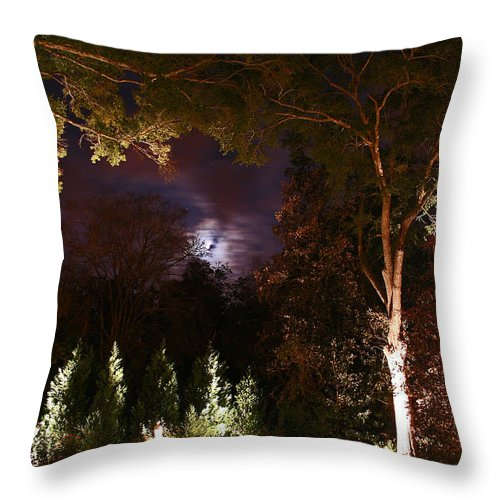 Night Throw Pillow featuring the photograph Higdon House Inn by David Campbell
