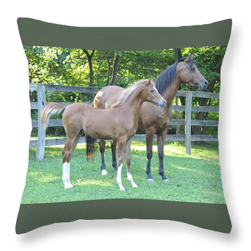 Horse Throw Pillow featuring the photograph High Hopes by Michael Barry