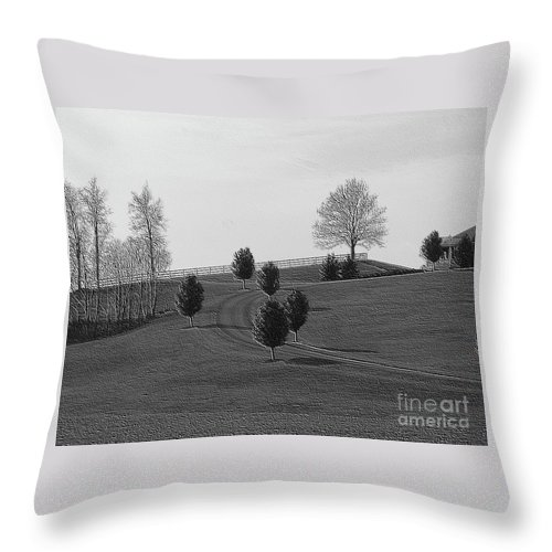 Country Throw Pillow featuring the photograph High On A Hill by Kathleen Struckle