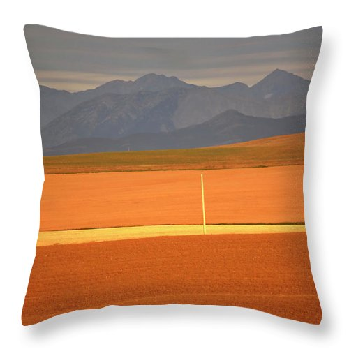 Sunlit Throw Pillow featuring the digital art High Plains Of Alberta With Rocky Mountains In Distance by Mark Duffy