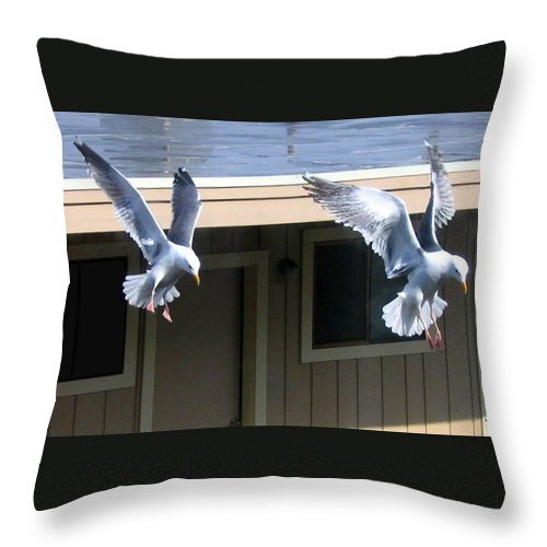 Seagulls Throw Pillow featuring the photograph High Spirits by Will Borden