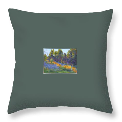 View Of Hillside And Evening Shadows Throw Pillow featuring the painting Hillside Shadows by Julie Mayser
