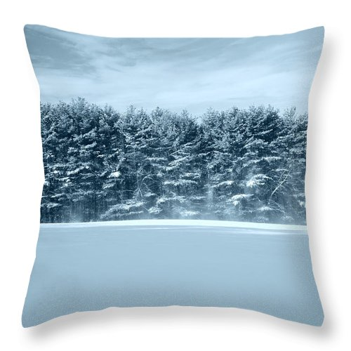 Landscape Throw Pillow featuring the photograph Hilltop by Tom Heeter