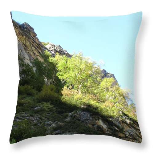 Bhojpatra Throw Pillow featuring the photograph Himalayan Bhojpatra Trees 7 by Oliver Riedel