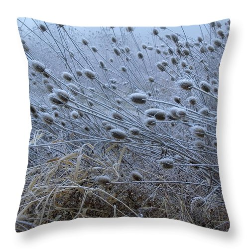 Landscape Throw Pillow featuring the photograph Hoar Frost by Amanda Kiplinger