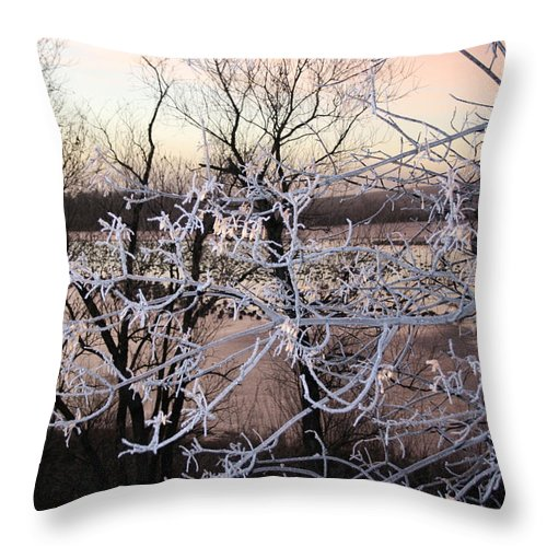 Hoar Frost Trees Lake Water Autumn Winter Ice White Cold Throw Pillow featuring the photograph Hoar Frost by Andrea Lawrence