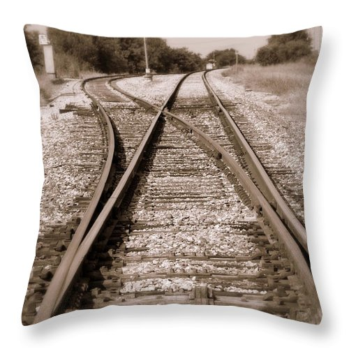Rail Throw Pillow featuring the photograph Hobo's Road by Elizabeth Hart