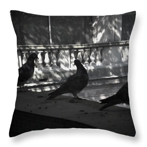 Birds Throw Pillow featuring the photograph Holding Court by Tim Nyberg