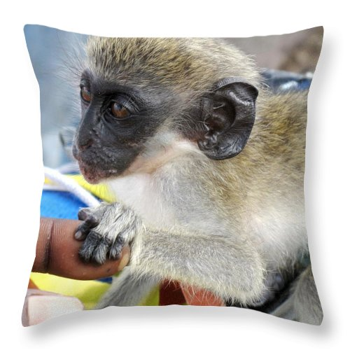 Verdant Throw Pillow featuring the photograph Holding Hands by Ian MacDonald