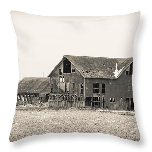 Barn Throw Pillow featuring the photograph Holding Its Own by Sheryl Mayhew