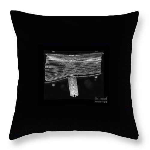 Antique Throw Pillow featuring the photograph Holding Time - 2 by Linda Shafer
