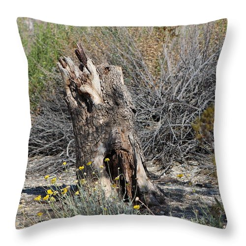 Stump Throw Pillow featuring the photograph Hollowed Stump in Desert Landscape by Colleen Cornelius