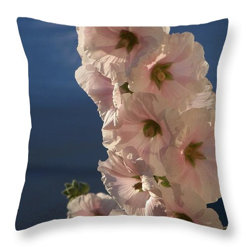 Floral Throw Pillow featuring the photograph Hollyhocks - Photograph by Jackie Mueller-Jones