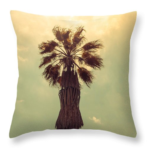 California Throw Pillow featuring the photograph Hollywood Gold by Joanne Donnelly