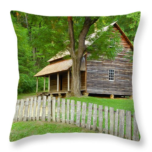 Home Throw Pillow featuring the photograph Homestead by David Lee Thompson