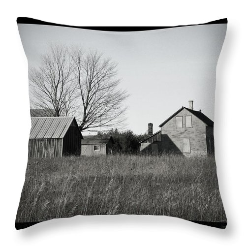 Deserted Throw Pillow featuring the photograph Homestead by Tim Nyberg