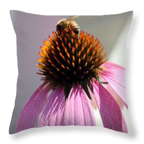 Landscape Throw Pillow featuring the photograph Honey Bee At Work by Mary Haber