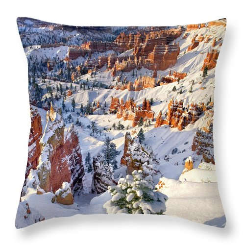 North America Throw Pillow featuring the photograph Hoodoos And Fir Tree In Winter Bryce Canyon Np Utah by Dave Welling