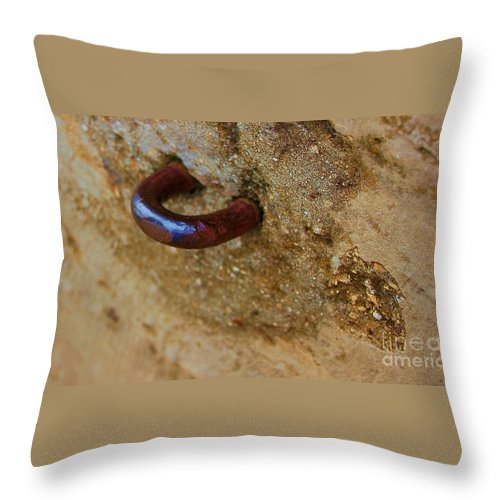 Concrete Throw Pillow featuring the photograph Hooked by Debbi Granruth