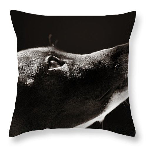 Peaceful Throw Pillow featuring the photograph Hopeful by Angela Rath