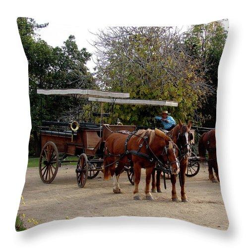 Colchagua Throw Pillow featuring the photograph Horse And Carriage by Brett Winn