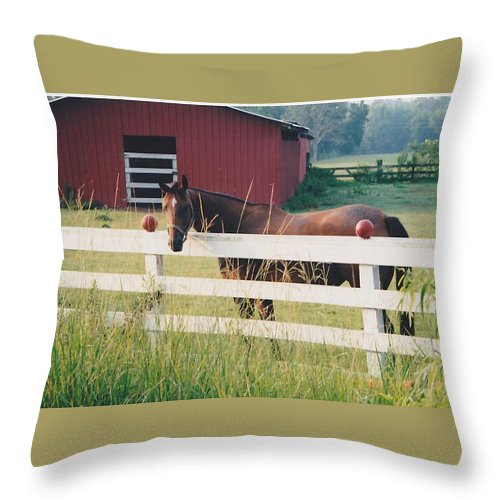 Landscape Throw Pillow featuring the photograph Horse And The Barn by Michelle Powell