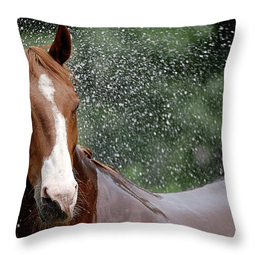 Horse Throw Pillow featuring the photograph Horse Bath I by Julie Niemela
