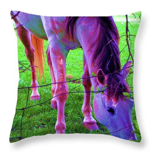 Horse Throw Pillow featuring the photograph Horse Of A Different Color by Susan Carella