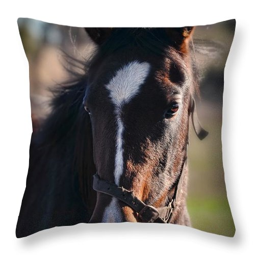 Horse Throw Pillow featuring the photograph Horse Whispering by Georgiana Romanovna