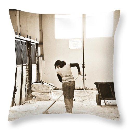 Horse Throw Pillow featuring the photograph Horse Work by Marilyn Hunt