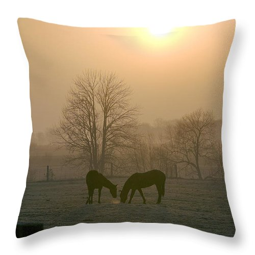 Horse Throw Pillow featuring the photograph Horses At Sunrise-1 by Steve Somerville