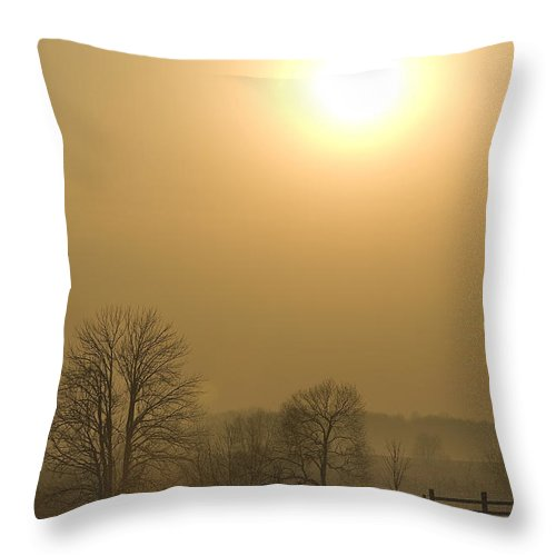 Landscape Throw Pillow featuring the photograph Horses At Sunrise-2 by Steve Somerville