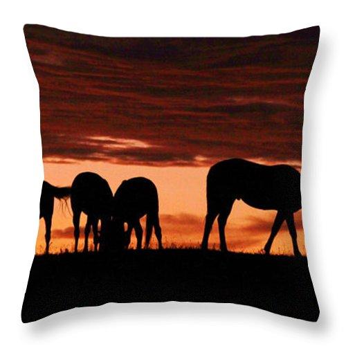 Horses Throw Pillow featuring the photograph Horses At Sunset by Tina Meador