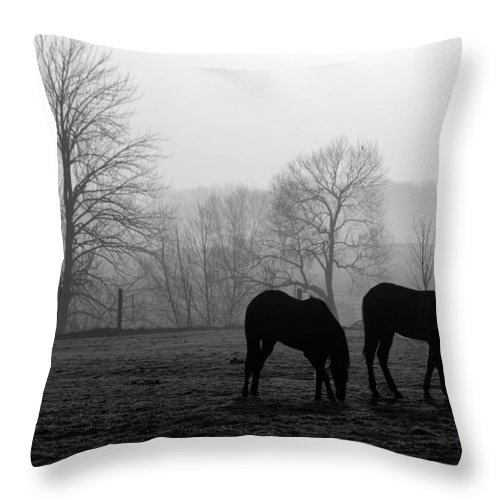 Horse Throw Pillow featuring the photograph Horses In Field B And W by Steve Somerville