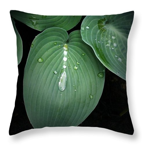 Hostas Throw Pillow featuring the photograph Hostas After The Rain by Tina Meador