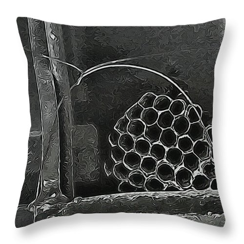 Wasp Throw Pillow featuring the photograph Hostel by Wendy J St Christopher