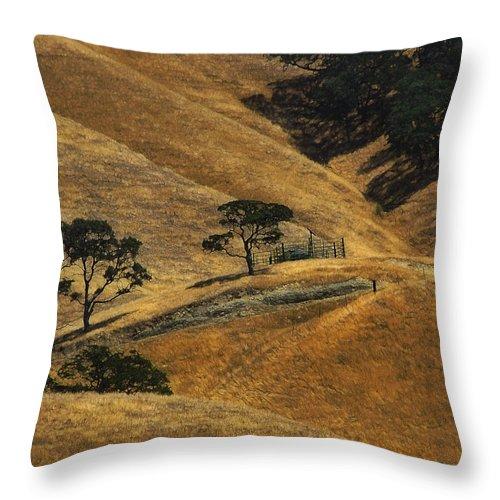 California Throw Pillow featuring the photograph Hot Days by Karen W Meyer