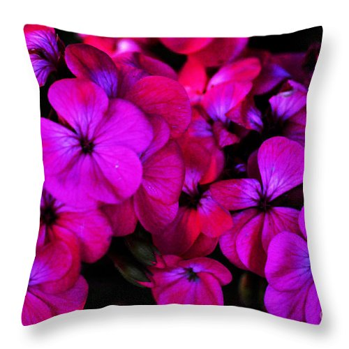 Clay Throw Pillow featuring the photograph Hot Pink Florals by Clayton Bruster