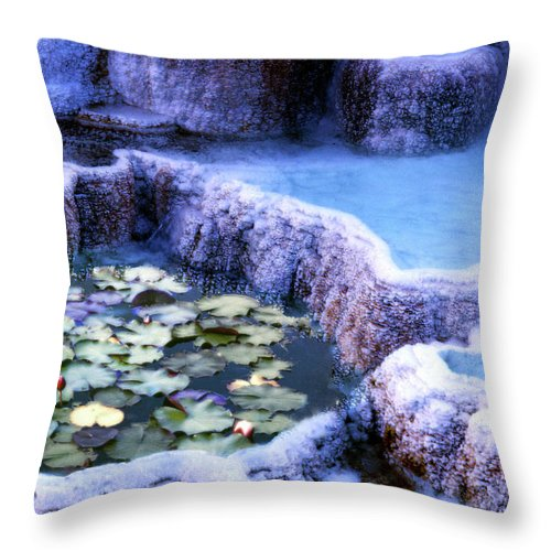 Lily Throw Pillow featuring the photograph Hot Springs And Lilies by Wayne King