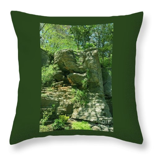Hot Throw Pillow featuring the photograph Hot Springs by Kathleen Struckle