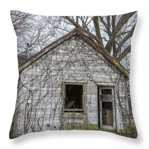 Vines Throw Pillow featuring the photograph House Of Vines by Carolyn Fox