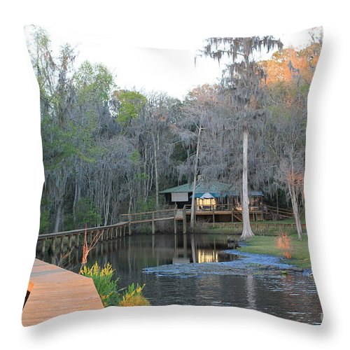 House Throw Pillow featuring the photograph House On The Inlet by Rod Andress